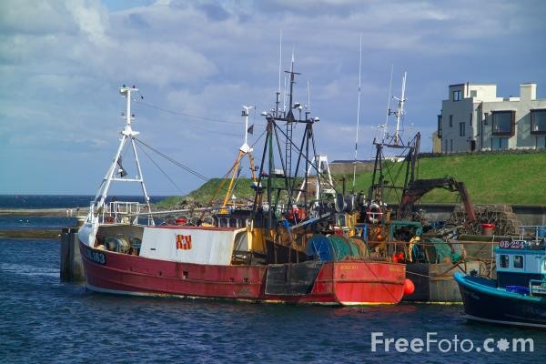 Picture of Seahouses, Northumberland - Free Pictures - FreeFoto.com