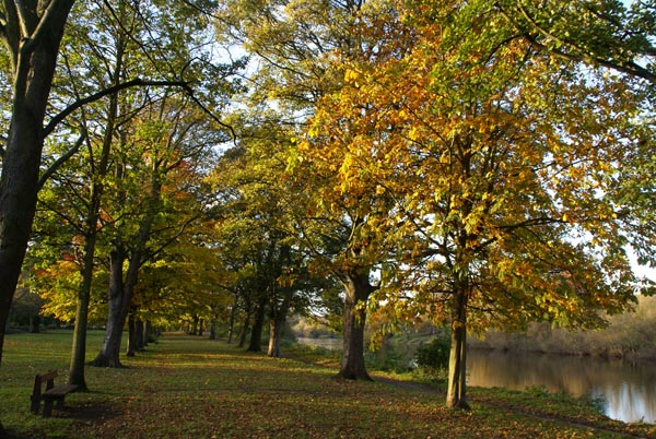 Picture of Tyne Green Park, Hexham, Northumberland - Free Pictures - FreeFoto.com