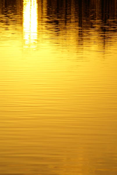 Picture of Sunset, Bolam Lake Country Park - Free Pictures - FreeFoto.com
