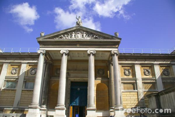Picture of Ashmolean Museum, Oxford, England - Free Pictures - FreeFoto.com