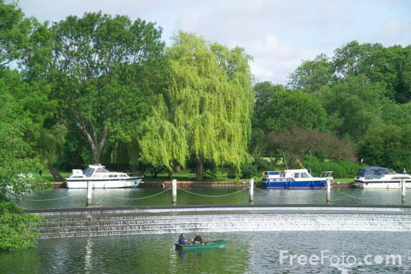 Picture of River Thames, Goring Gap - Free Pictures - FreeFoto.com