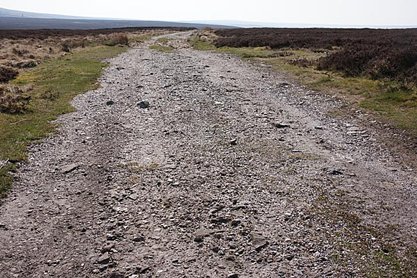 Picture of Lead Mining Trail, Edmundbyers Common - Free Pictures - FreeFoto.com
