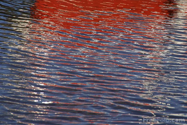 Picture of Red Reflections - Free Pictures - FreeFoto.com