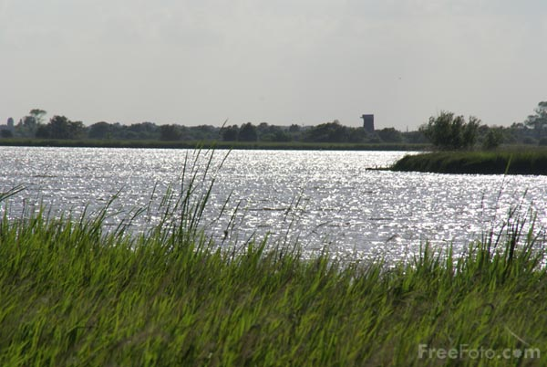 Picture of Horsey Mere, Norfolk - Free Pictures - FreeFoto.com