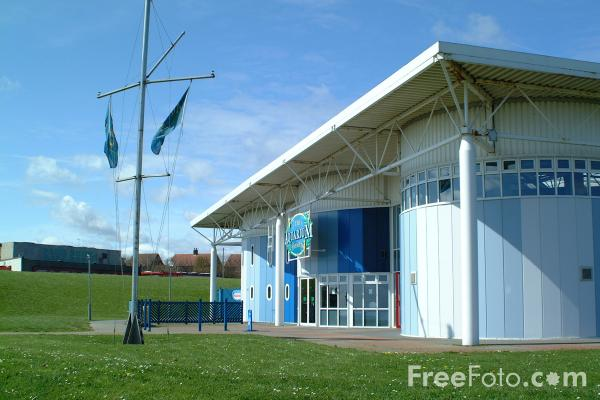 Picture of Sea Life Centre, Cullercoats - Free Pictures - FreeFoto.com