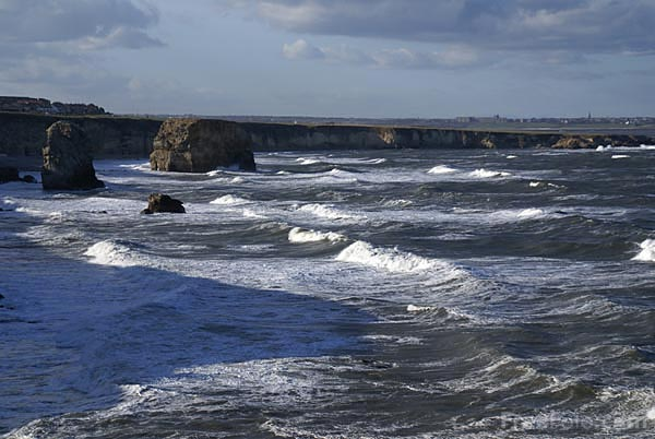 Picture of Coast at South Shields - Free Pictures - FreeFoto.com