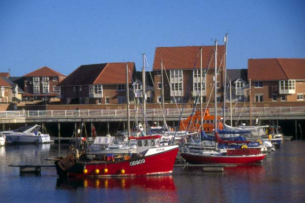 Picture of New Haven Marina, Sunderland - Free Pictures - FreeFoto.com