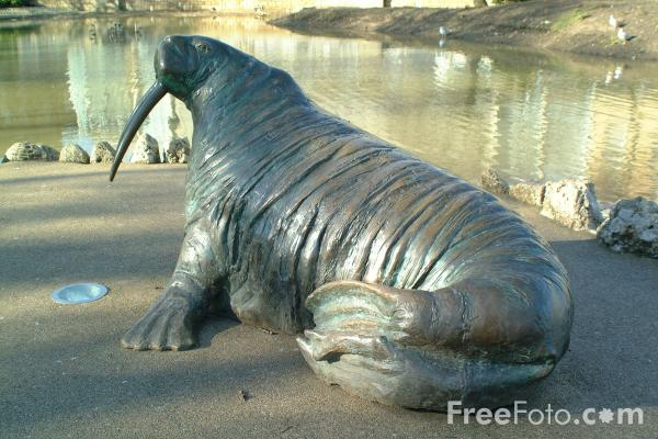 Picture of Walrus, Mowbray Park, Sunderland - Free Pictures - FreeFoto.com