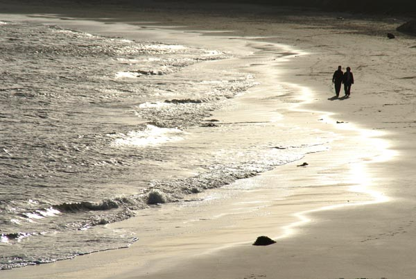 Picture of The Beach, Whitley Bay - Free Pictures - FreeFoto.com