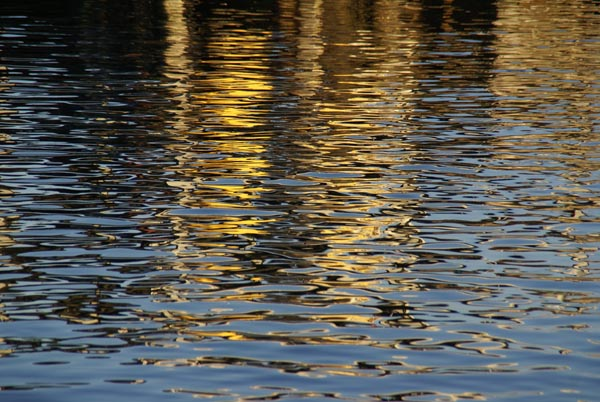 Picture of Reflections, North Shields - Free Pictures - FreeFoto.com