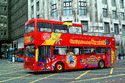 City Sightseeing Newcastle has been viewed 7387 times