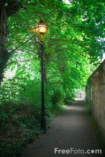 Picture of Tree Lined Footpath, Warwick - Free Pictures - FreeFoto.com