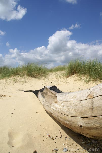 Picture of The beach, Southwold, Suffolk, England - Free Pictures - FreeFoto.com