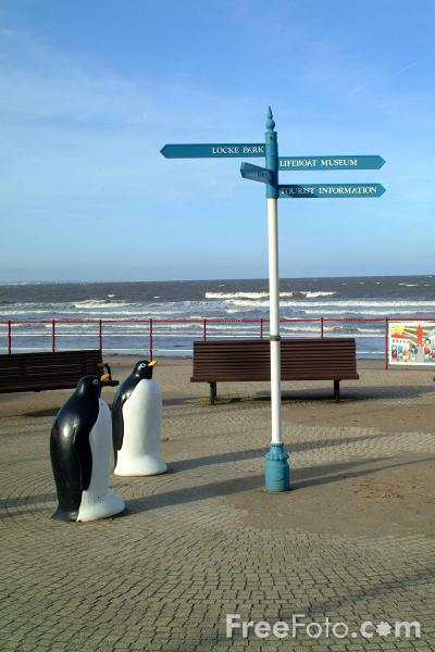 Picture of Penguins, Sea Front, Redcar - Free Pictures - FreeFoto.com