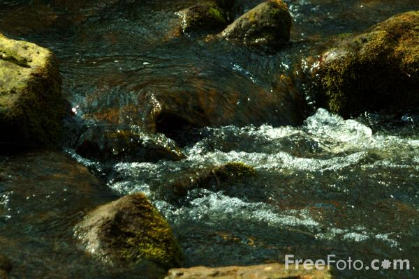 Picture of West Beck, Goathland, North Yorkshire - Free Pictures - FreeFoto.com