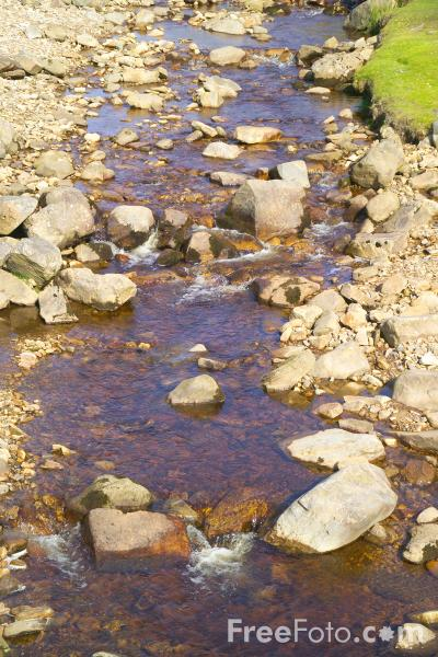Picture of Hard Level Gill, Swaledale, North Yorkshire - Free Pictures - FreeFoto.com
