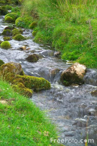 Picture of Stream, Swaledale, North Yorkshire - Free Pictures - FreeFoto.com