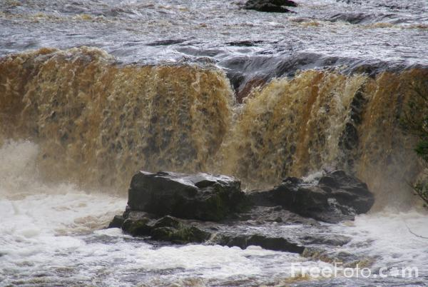 Picture of Aysgarth Falls - Free Pictures - FreeFoto.com
