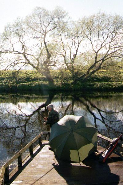 Picture of Fishing on the River Tees, Yarm - Free Pictures - FreeFoto.com