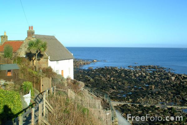 Picture of Runswick Bay - Free Pictures - FreeFoto.com
