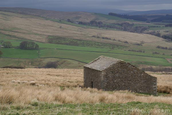 Picture of Stone Barn, The Yorkshire Dales - Free Pictures - FreeFoto.com