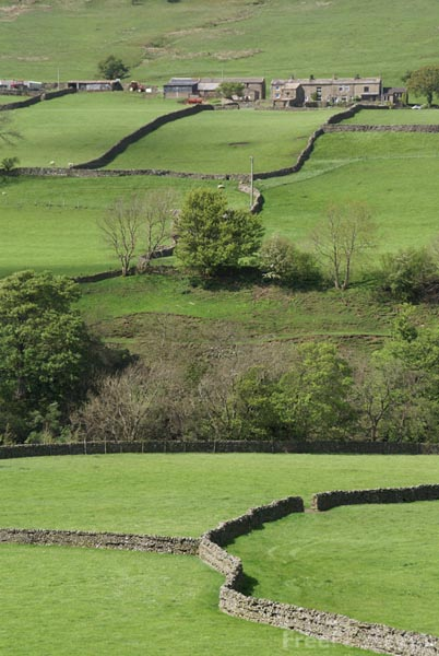 Picture of Swaledale, Yorkshire Dales - Free Pictures - FreeFoto.com