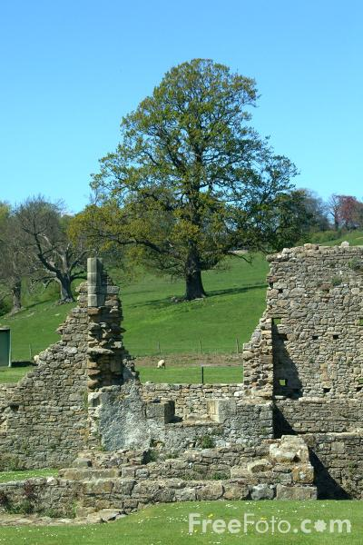 Picture of Easby Abbey, Richmond, North Yorkshire - Free Pictures - FreeFoto.com