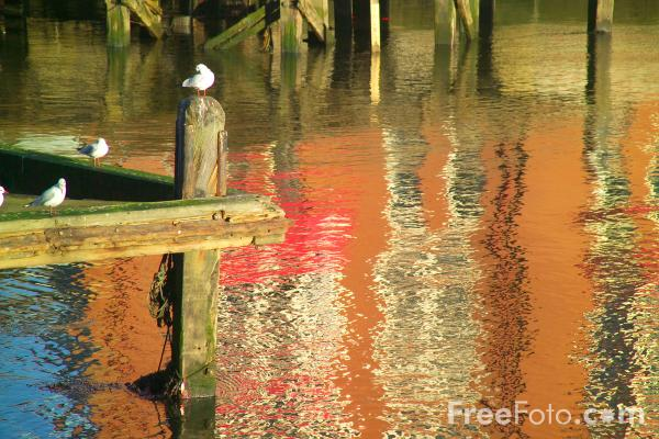 Picture of Reflections, Whitby, North Yorkshire - Free Pictures - FreeFoto.com