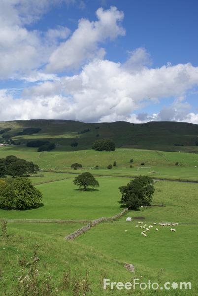 Picture of Wensleydale, North Yorkshire - Free Pictures - FreeFoto.com