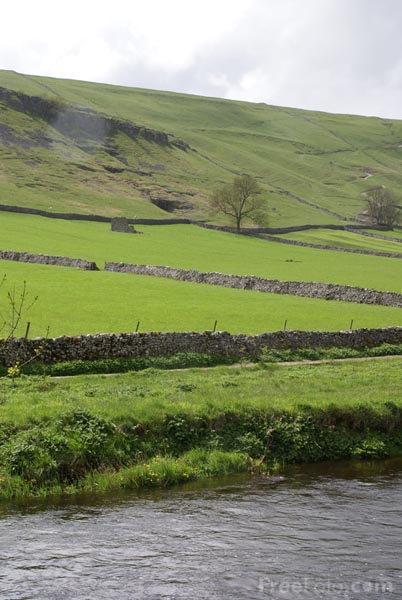 Picture of River Wharfe, Wharfedale - Free Pictures - FreeFoto.com