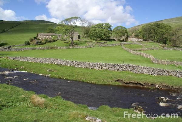 Picture of River Wharfe, Langstrothdale - Free Pictures - FreeFoto.com