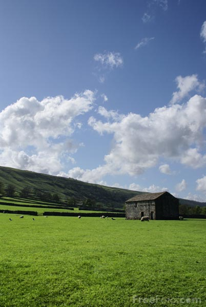 Picture of Field Barn, Upper Wharfedale - Free Pictures - FreeFoto.com