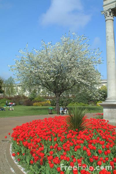 Picture of Alexandra Gardens, Cardiff - Free Pictures - FreeFoto.com