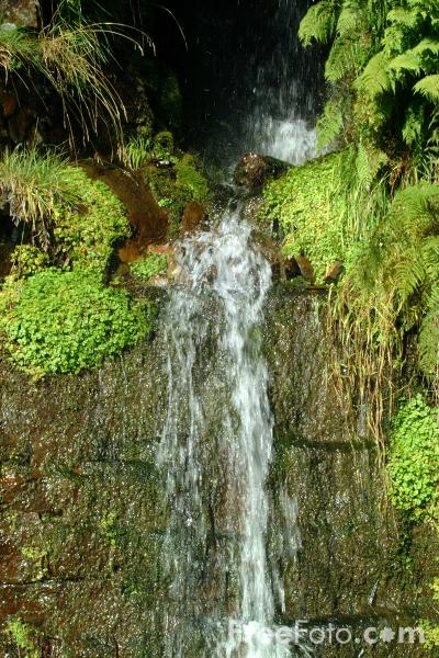 Picture of Waterfall, Treherbert, South Wales - Free Pictures - FreeFoto.com