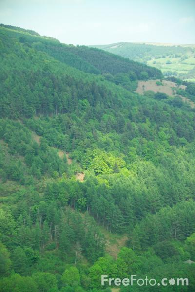 Picture of Cwmcarn Forest, Caerphilly, South Wales - Free Pictures - FreeFoto.com