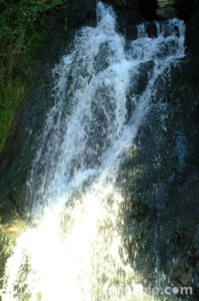 Picture of Ty Gwyn Waterfall, Betws-Y-Coed - Free Pictures - FreeFoto.com