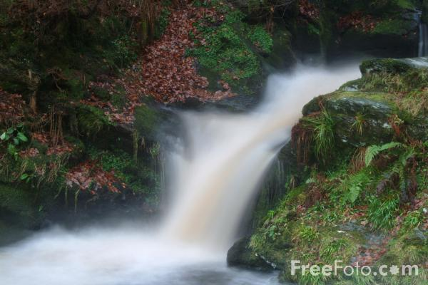 Picture of Pistyll Rhaeadr Waterfall, Denbighshire, Wales - Free Pictures - FreeFoto.com