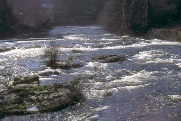 Picture of Llangollen, Denbighshire, Wales - Free Pictures - FreeFoto.com