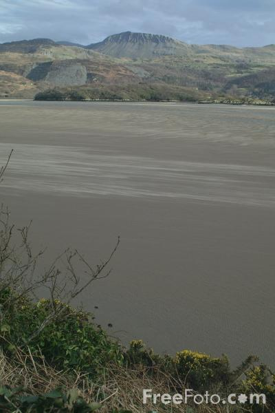 Picture of Mawddach Estuary - Free Pictures - FreeFoto.com