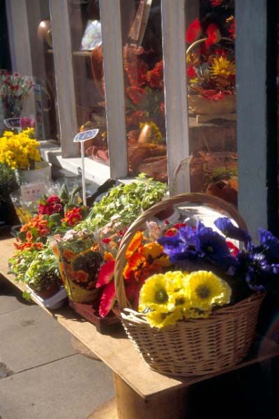 Picture of Flower Shop, Broad Street, Welshpool, Powys, Wales - Free Pictures - FreeFoto.com