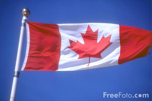 Picture of Canadian Flag - Free Pictures - FreeFoto.com