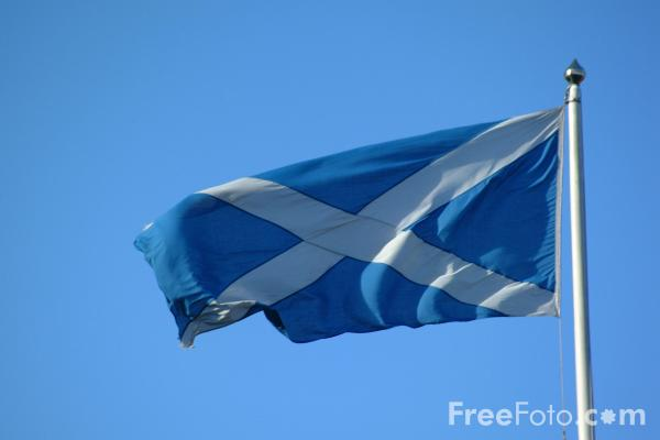 Picture of Scottish Flag - Free Pictures - FreeFoto.com