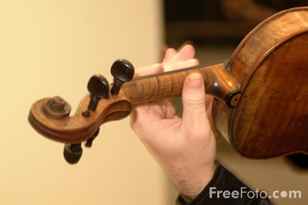 Picture of Violin - Free Pictures - FreeFoto.com