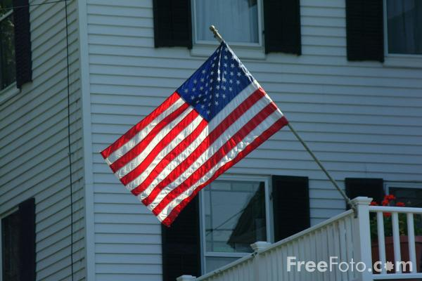 Picture of Stars and Stripes - Free Pictures - FreeFoto.com
