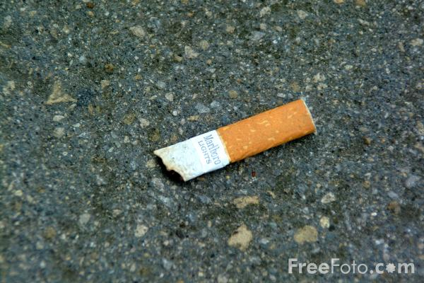Picture of Stubbed Out Cigarette - Free Pictures - FreeFoto.com