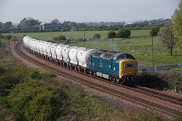 Picture of Deltic D9000/55022 Royal Scots Grey near Cambois - Free Pictures - FreeFoto.com