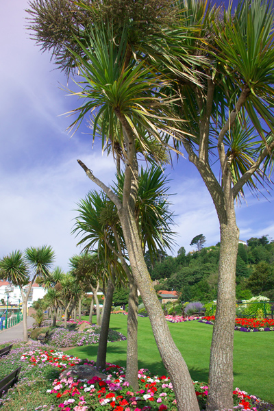 Picture of Winston Churchill Memorial Park, St Brelade, Jersey, The Channel Islands - Free Pictures - FreeFoto.com
