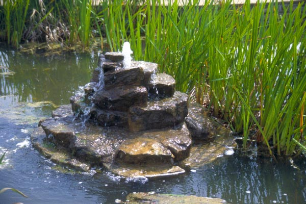 Picture of Garden Water Features - Free Pictures - FreeFoto.com