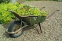 Image Ref: 12-04-15 - Wheel Barrow, Viewed 19075 times
