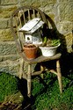 Image Ref: 12-04-59 - Birds house and spring bulbs, Viewed 10002 times